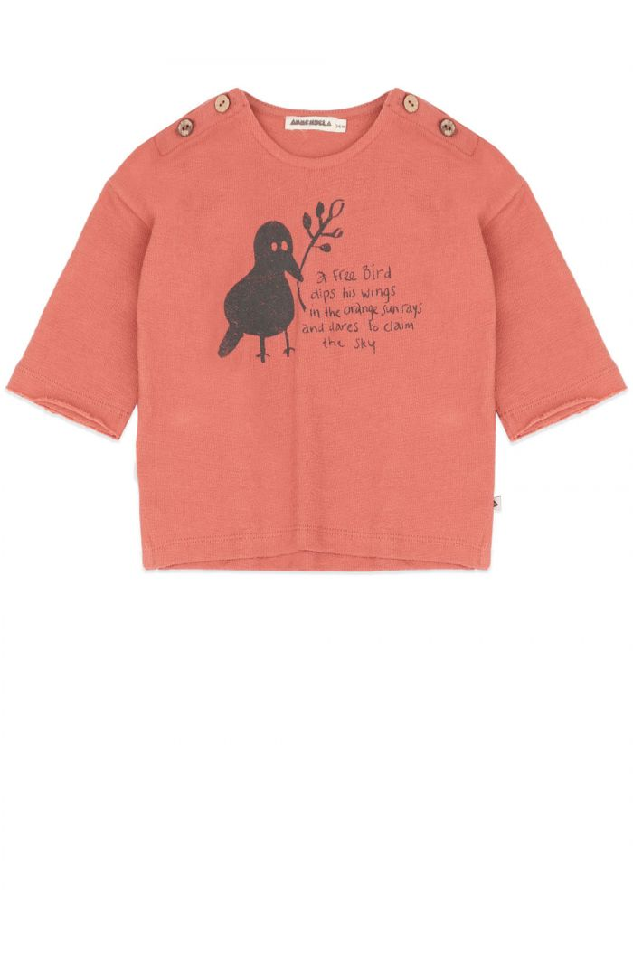 Ammehoela Bunny T-shirt Copper-Coin_1