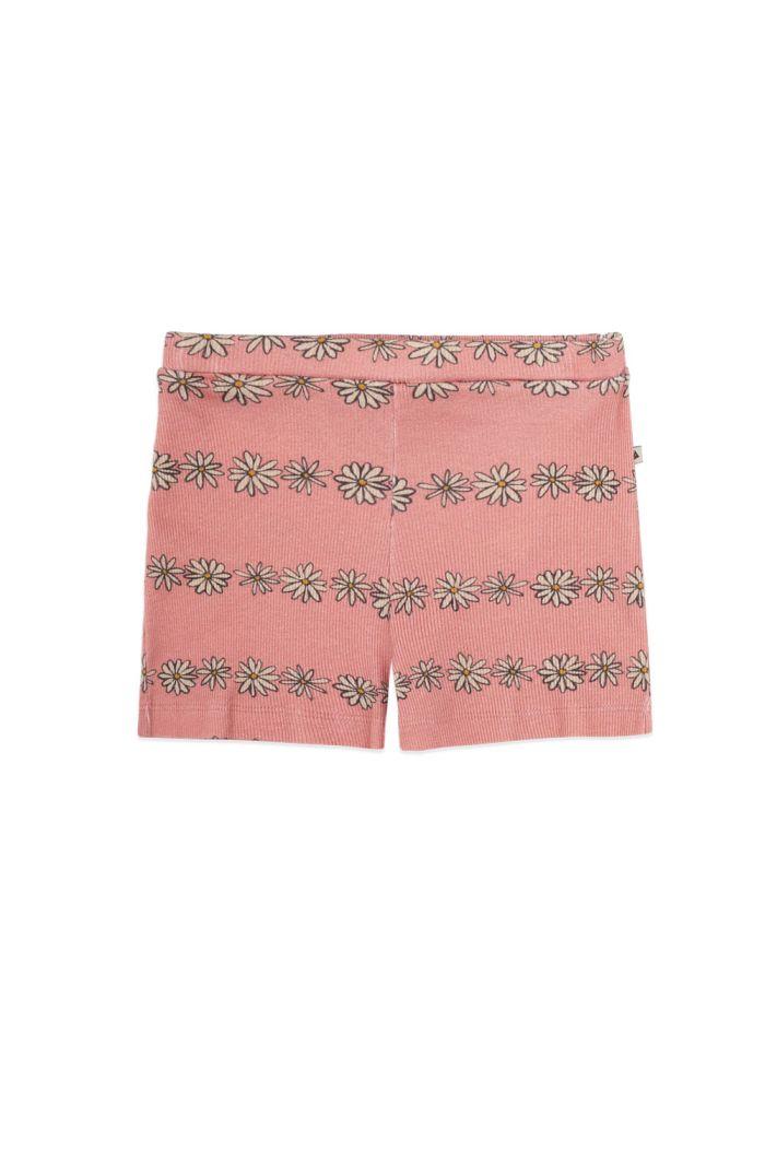 Ammehoela Evie Shorts Daisy_1
