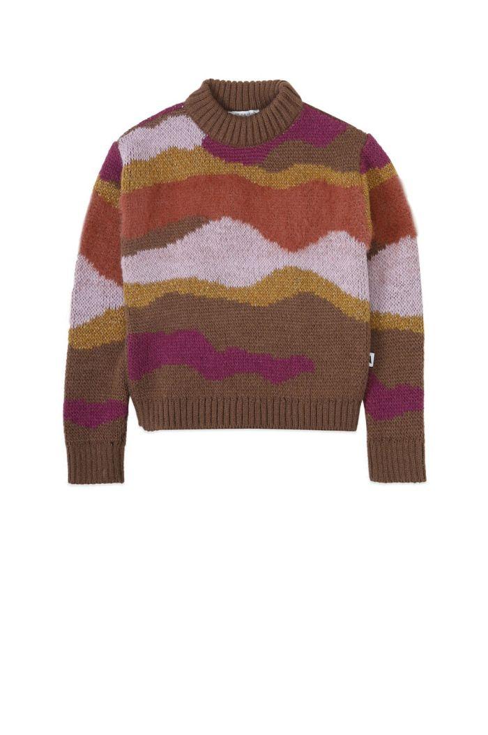 Ammehoela Roxie Sweater Multicolor_1