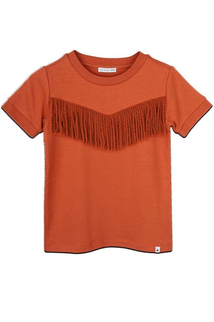 Ammehoela Ringer T-shirt Bombay-Brown_1