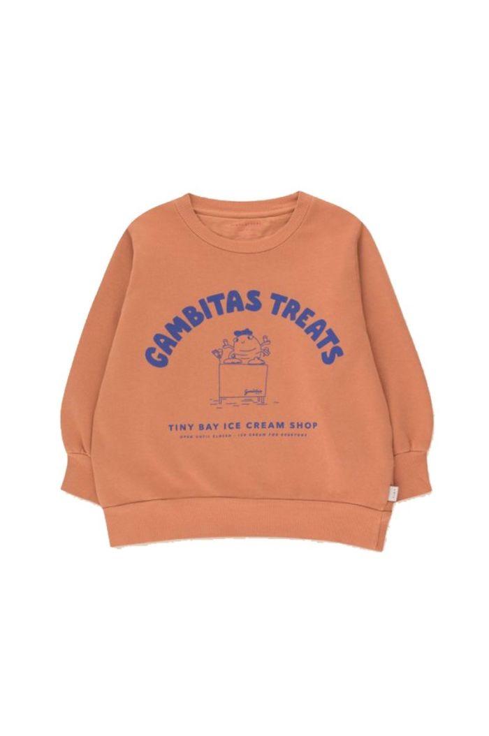 Tinycottons Gambitas Treats Sweatshirt Cinnamon/Iris Blue_1