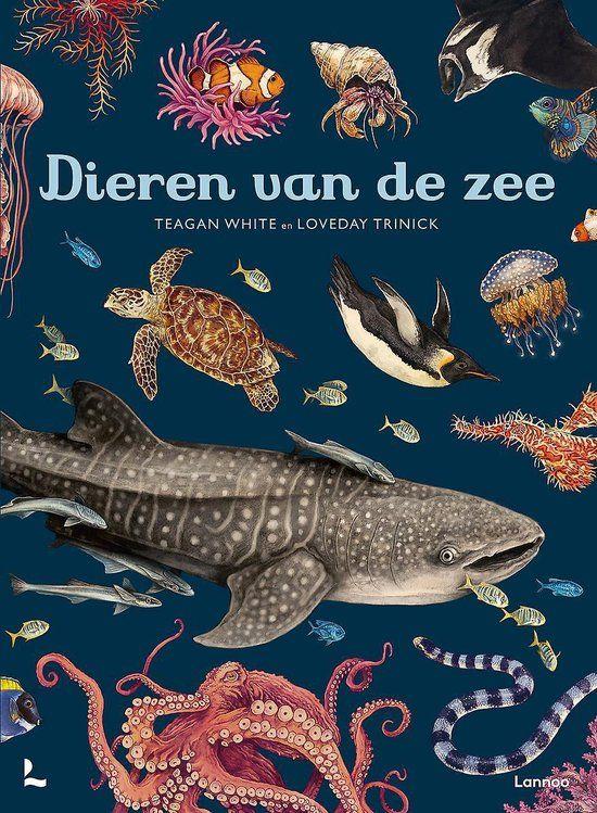 Dieren van de Zee - in Jongens