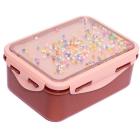 Petit Monkey Lunchbox Popsicles Desert Rose _1