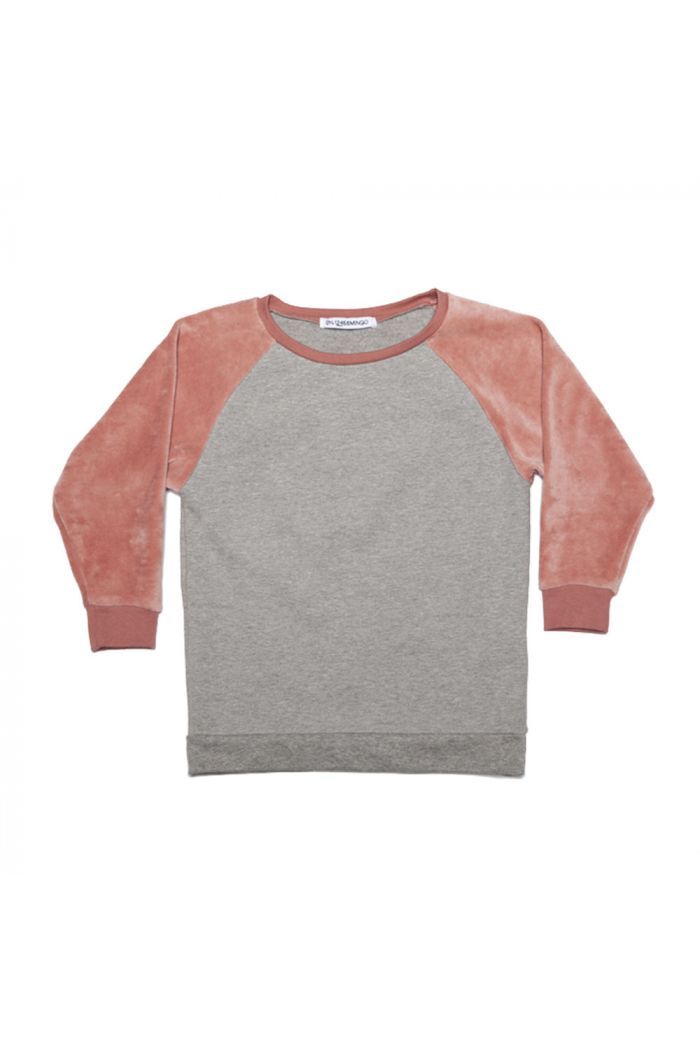 Mingo Velvet Sweater Grey/raspberry
