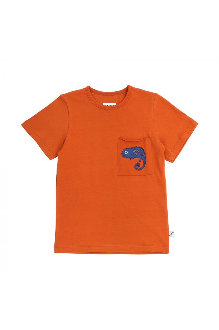 CarlijnQ t-shirt with pocket Chameleon boy