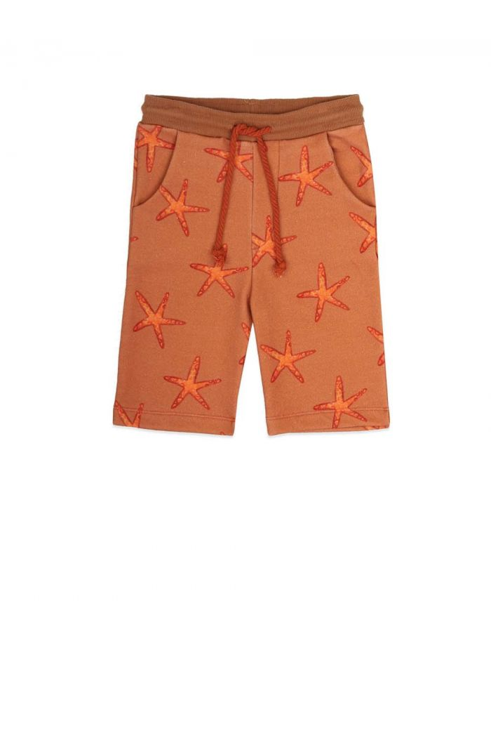 Ammehoela Mase Shorts Starfish